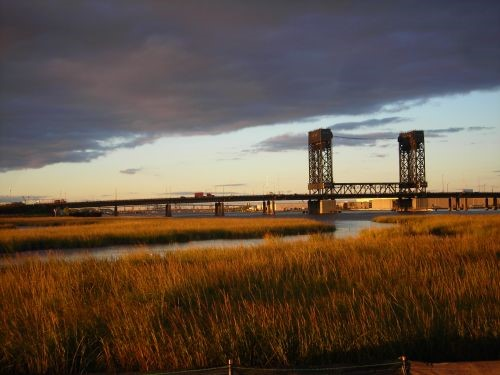 A wetland landscape with a bridge in the background.