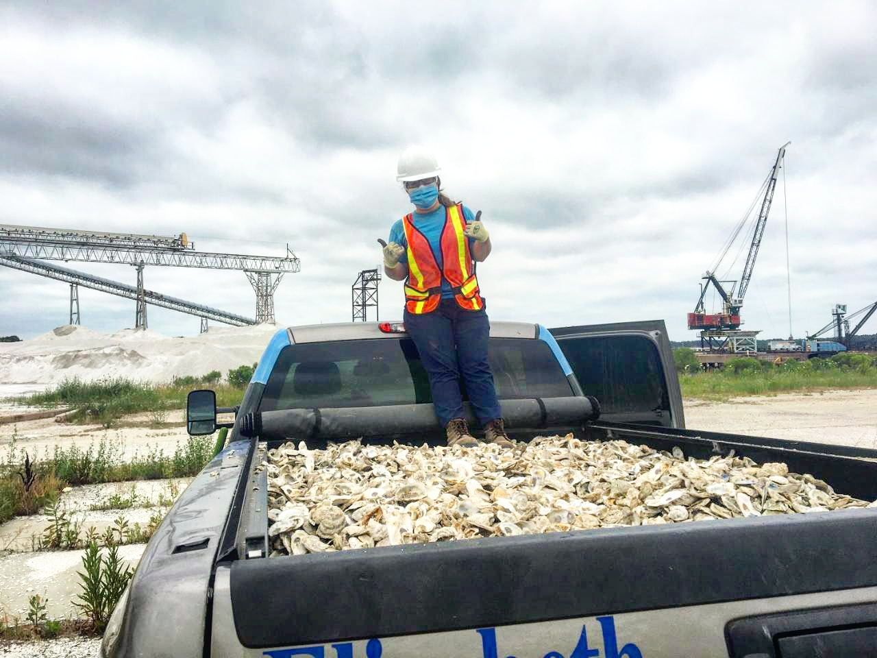 A person in a hard hat and an orange vest standing in a truck bed filled with oysters.