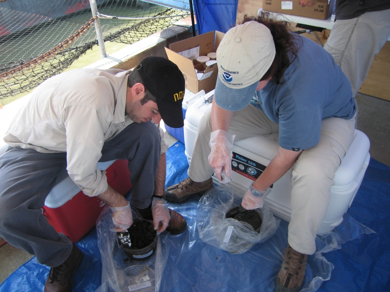 Two people working with sediment samples.