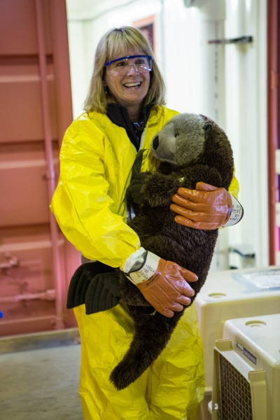 A woman holding a fake otter.