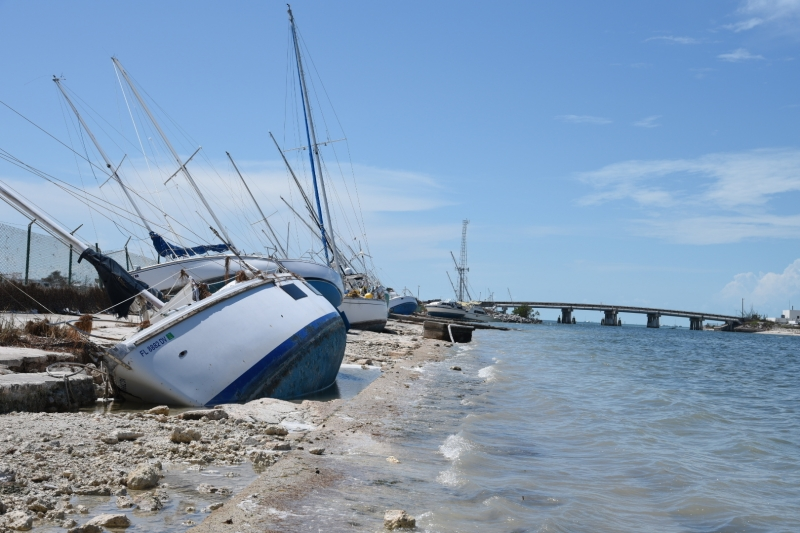 A row of beached, derelict vessels on a shoreline with a bridge in the background.