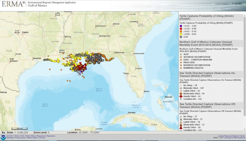 A map of the gulf coast with colored indicators to mark sea turtle data.