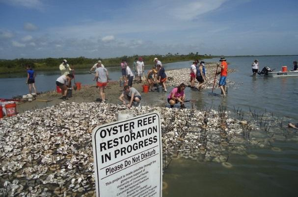 "A closeup shot of a sign that reads ""Oyster reef restoration in progress,"" with people working in the background on a coastal area."