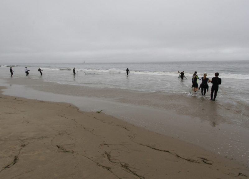People standing on a beach pulling in netting.