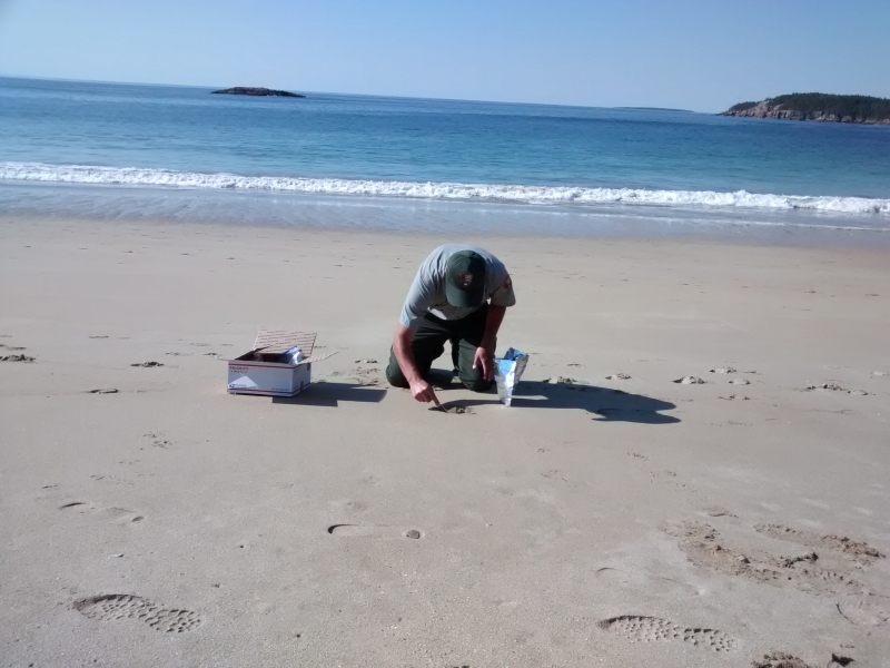 A man collects sand on a beach.