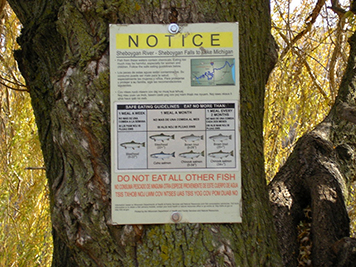 A notice posted on a tree with fish eating advisories on it.