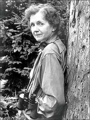 Rachel Carson: Biologist, Writer, Role Model | NOAA's