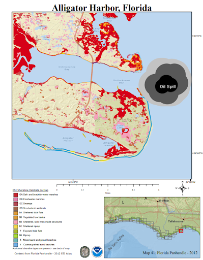 A map of Alligator Harbor with an oil spill depicted in the water and red areas along the shore highlighting sensitive resources at risk.