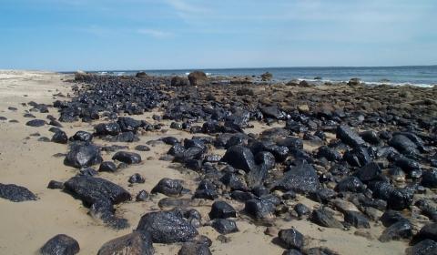 An oiled rocky shoreline.
