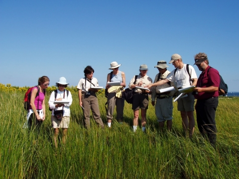 A group of people in tall grass looking down at their notebooks.