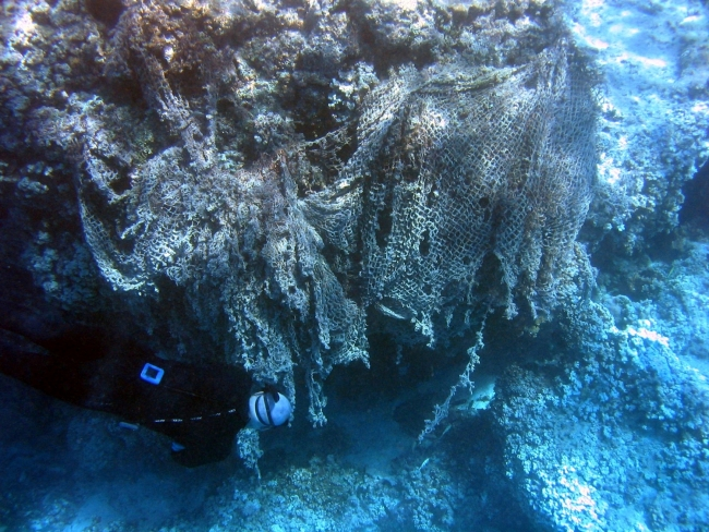 A diver swimming next to a large pile of fishing nets on top of a coral.