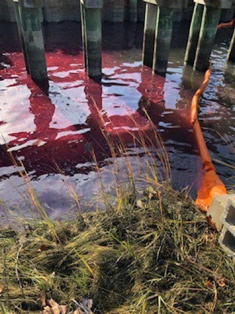 A red liquid in water with pollution boom around it.