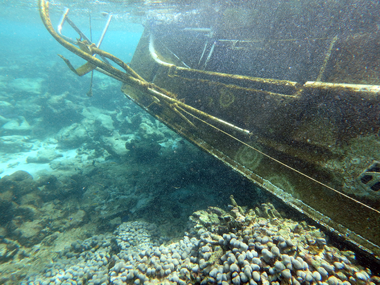 An underwater photo of a derelict vessel.