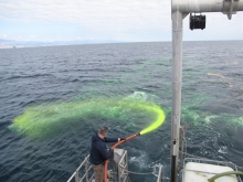 A man spraying a fluorescent yellow fluid into the water.