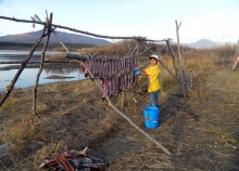 A boy hanging meat to dry.