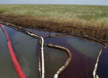 Oil in water near a marsh with pollution boom around it.