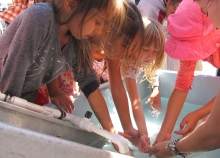 A group of children place their hands in a tub of water.