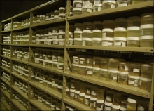 Specimen containers lining multiple shelves.