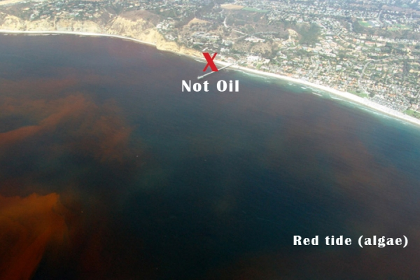An aerial view of a cloudy red substance in water.