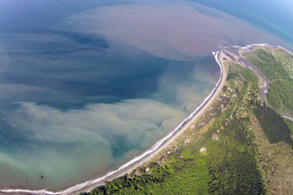 An aerial view of a cloudy tan substance in a body of water along a shoreline.